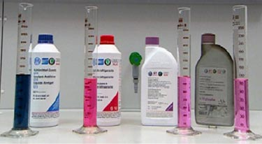 G11, green-blue; G12, red; G12+ and G12++, purple; G13 (not pictured), purple.